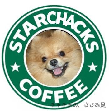 Starcha_2