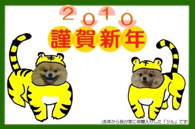Tora20101