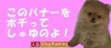 「人気ブログランキング」用バナー